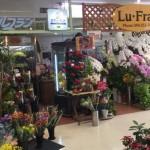 花の店 ルフラン・TOP